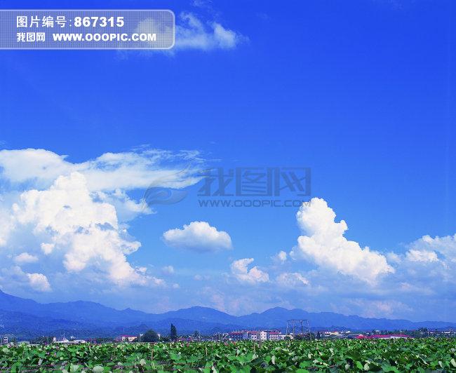 风景 自然 陆地 旷野
