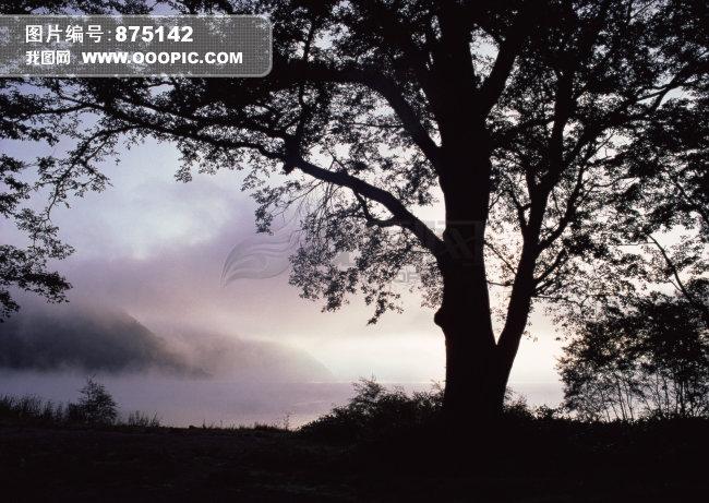 自然 田园 风光模板下载 875142
