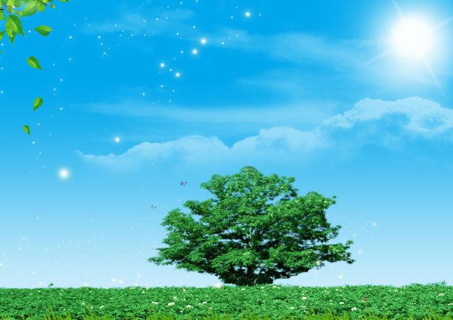 ps背景图片素材库 背景图片素材 底板背景 蓝天背景 树叶 树木 绿色