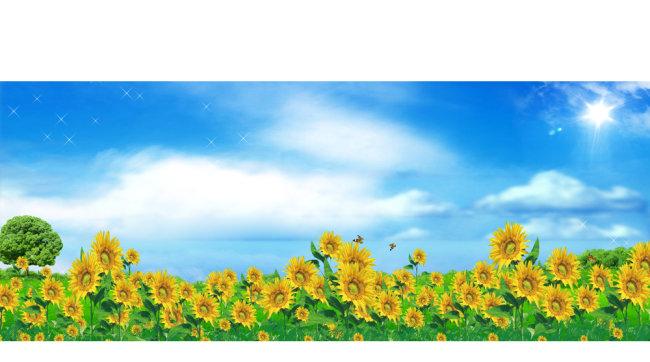 春天展板模板背景图片下载向日葵太阳花春天蓝天白云 花 树 阳光 云朵