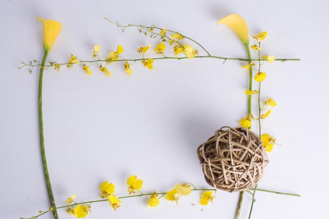 方形边框 边框素材 边框素材下载 黄色 花 花卉 球 竹编的 花朵 植物