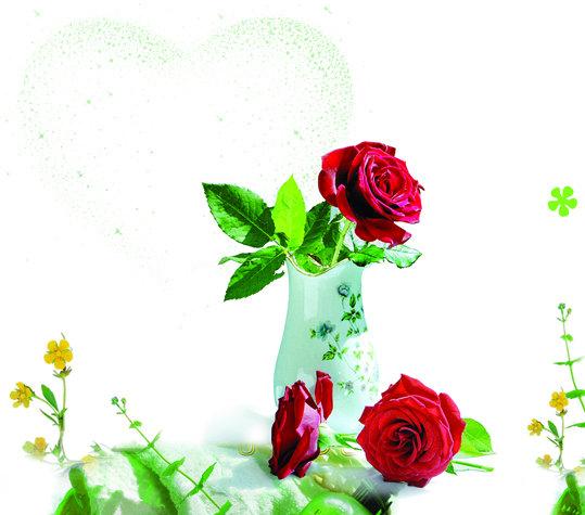 玫瑰花香 cdr coreldraw9 菊花 花瓶 玫瑰 黄花 绿叶 叶子