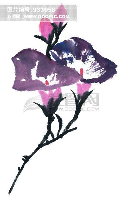 绘画莲花作品