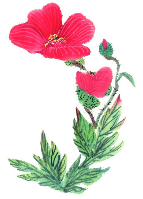 国画手绘花卉作品
