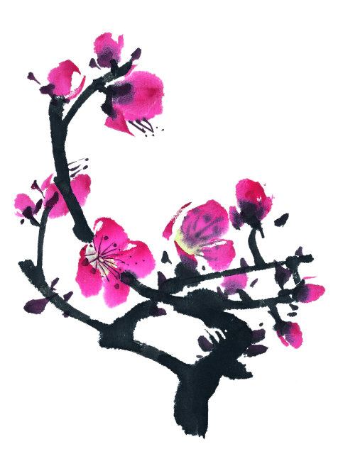梅花      手绘 花 叶子 茎 花瓣 红色 洋红 冬天 花蕊 清新 自然美图片