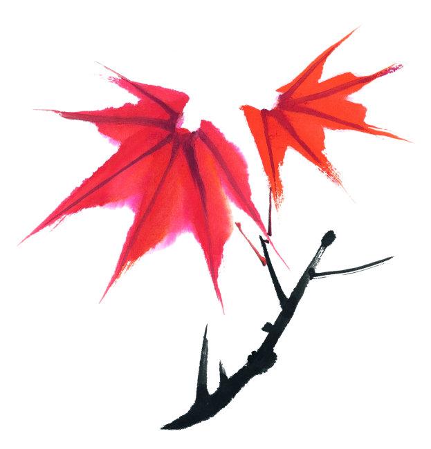国画手绘枫叶作品