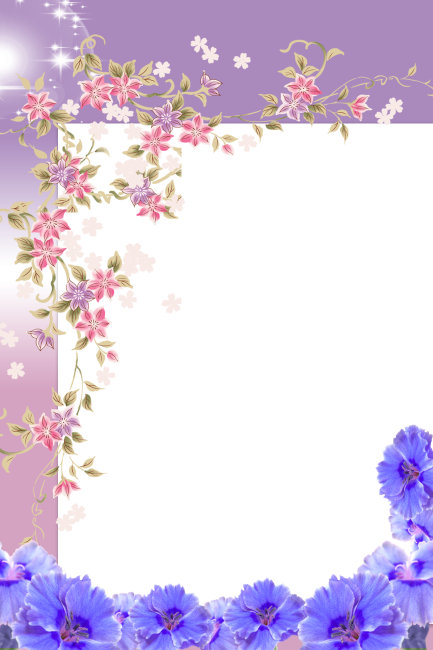 花边相框相册模板下载