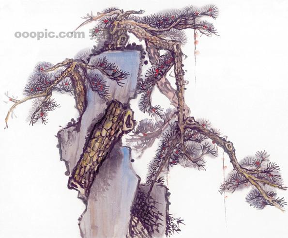 黄山迎客松 松树 树干 树枝 中华艺术绘画