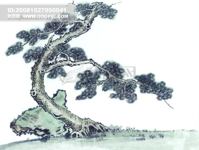 松树 树干 树枝 黄山 中华艺术绘.