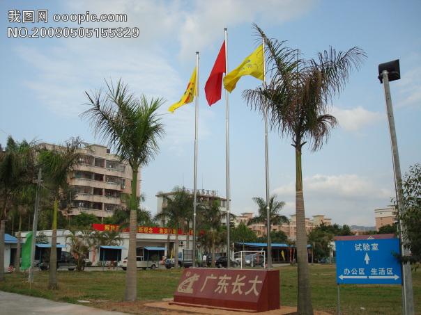 国旗风景图片