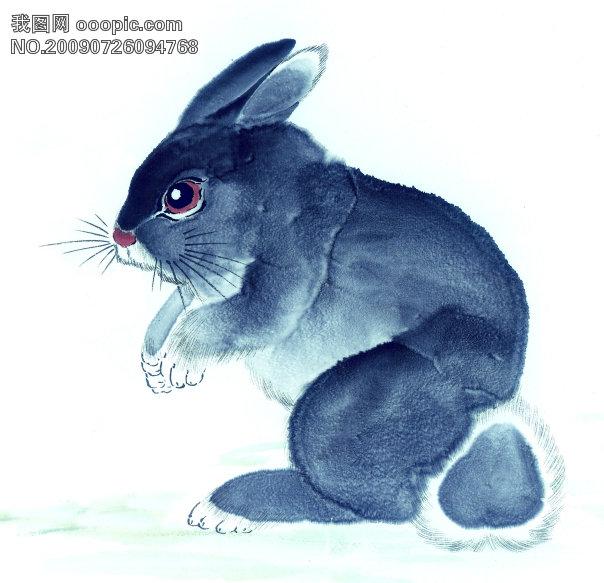 兔子艺术绘画图片_兔子凌风陶启全手绘画画艺术彩色圆珠笔画…