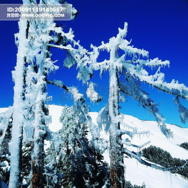 描写冬天长白山风景的旅游作文