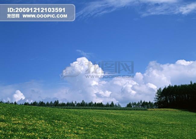 田园风光 018模板下载 791241