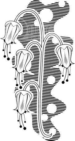 黑白背景花纹 韩国花纹 装饰花纹 矢量欧美花纹元素 纹理花纹酒吧 时尚