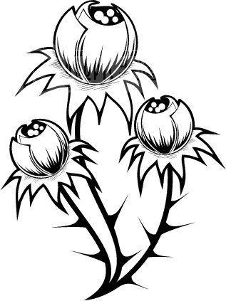 黑白背景花纹 花边 韩国花纹 装饰花纹 矢量欧美花纹元素 纹理花纹