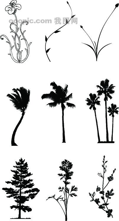 矢量树木_树木树叶_生物世界