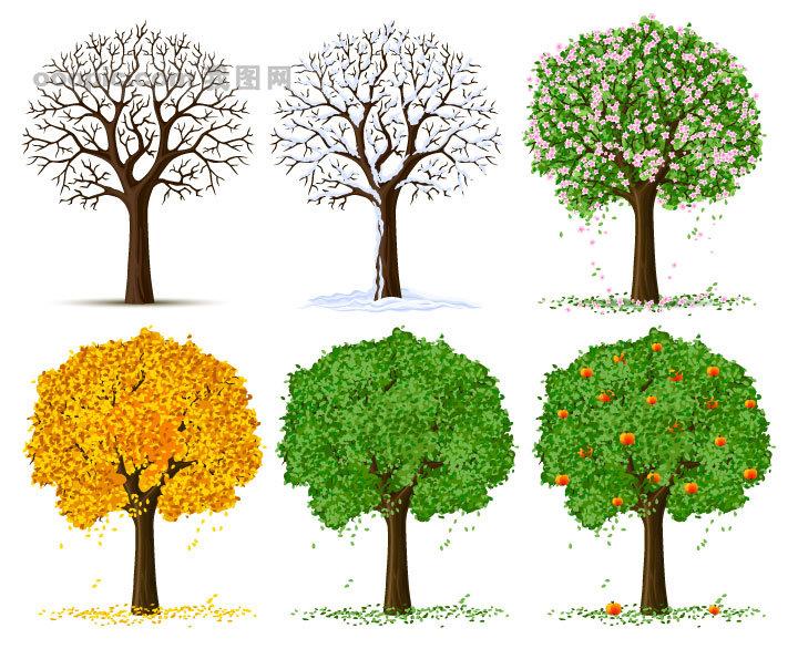 四季的树木矢量素材
