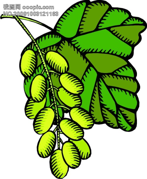 卡通蔬菜水果6-日常生活第644页