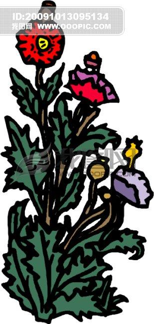 花瓣 花草 花卉 花卉图片大全 矢量 矢量图 矢量图库 矢量素材 矢量素