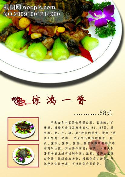 红玫瑰 美食营养简介 微利设计 菜单|菜谱大全|菜谱设计模板 鲁菜菜谱