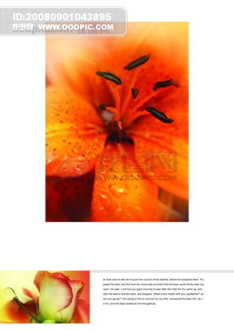 影骑 平面广告PSD分层素材源文件 页面 排版 版式 艺术 ...