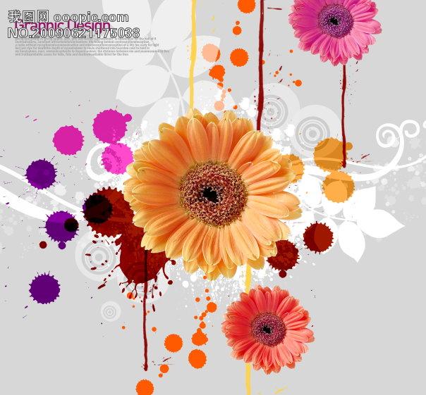 秋天花朵简笔画彩色